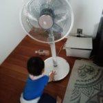 赤ちゃんと扇風機